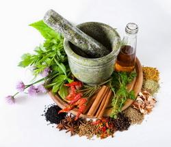 mekanisme-hutan-bertanaman-herbal