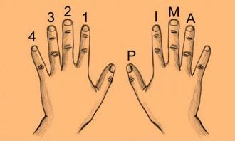 teknik-fingerpicking-jari-kanan-dalam-gitar-klasik2